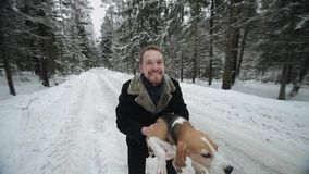 Beagle dog walking with his master. Man throwing his pet up for fun. Man and dog having fun in winter forest. Wide angle view stock video footage