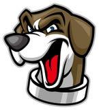 Beagle head dog mascot Royalty Free Stock Images
