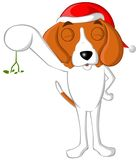 Beagle mistletoe Royalty Free Stock Photography