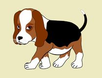 Beagle puppy. Cartoon of a small dog - beagle puppy stock illustration