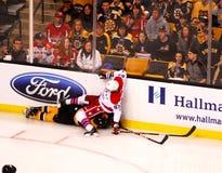 beagle падает tyler верхней части seguin jay Стоковая Фотография RF