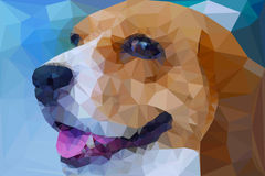 Beagle vector polygon geometric Stock Image