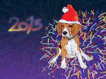 Beagle wear christmas hat with fireworks background Stock Images