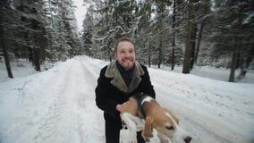 Beaglehund som går med hans förlage Man som kastar upp hans husdjur för gyckel Man och hund som har gyckel i vinterskog lager videofilmer