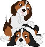 Beagles lindos de la historieta ilustración del vector