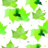 beak dekoracyjnego latającego ilustracyjnego wizerunek swój papierowa kawałka dymówki akwarela Wzór przejrzysty grże zielonych li Obraz Stock
