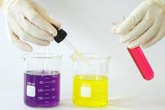 Beaker лаборатории заполнил при химическая жидкость и пипетка добавляя падение жидкости до одно из нескольких пробирка Стоковая Фотография RF
