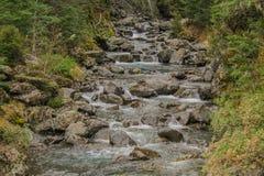 Bealey River at Devil`s Punchbowl Waterfall walking track, Arthur`s Pass, New Zealand stock photo
