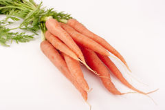 Beam carrots Stock Photo