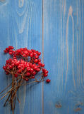 Beam rowan on a wooden table. Beam rowan on a wooden  blue table Stock Photos