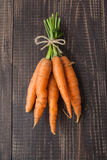 Beam of young carrots Royalty Free Stock Images