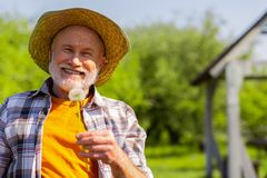 Beaming grey-haired retired man smiling while holding dandelion. Man smiling. Beaming grey-haired retired man wearing straw hat smiling while holding dandelion royalty free stock photos