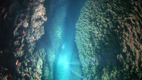Beams of Light and Reef Crevice Stock Photos
