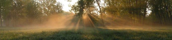 beams sol- Fotografering för Bildbyråer