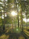 Beams of the sun Stock Photo