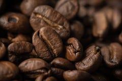 bean śniadanie kawa ideał wyizolował makro nadmiar białych Fotografia Royalty Free