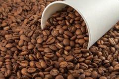 bean śniadanie kawa ideał wyizolował makro nadmiar białych Zdjęcie Stock