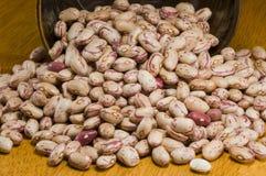 Bean Stock Photo