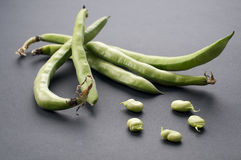 Bean. Fresh green bean with gray background Royalty Free Stock Photography