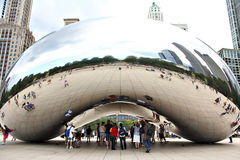 The Bean Royalty Free Stock Photo