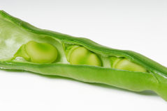 Bean Stock Photo