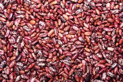 Bean background Stock Photo