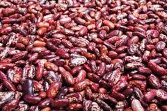 Bean background Stock Photos