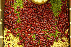 Bean background in a printers box, pinto, lima, navy, black eyed Royalty Free Stock Images