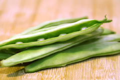 Bean blant. Green bean plant with peas stock images