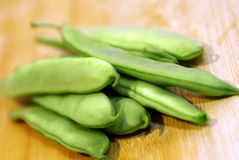 Bean blant. Green bean plant with peas Stock Photos