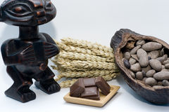 Bean of cocoa. With chocolate Royalty Free Stock Images