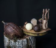 Bean of cocoa and chocolates Royalty Free Stock Images