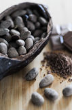 Bean of cocoa. Different forms of cocoa and chocolate Royalty Free Stock Photography