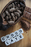 Bean of cocoa. Different forms of cocoa and chocolate Royalty Free Stock Images