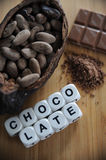Bean of cocoa. Different forms of cocoa and chocolate Stock Photography