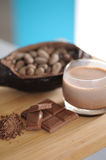 Bean of cocoa. Different forms of cocoa and chocolate Stock Images