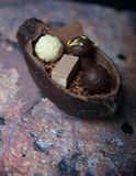 Bean of cocoa and chocolates. Bean of cocoa and easter chocolates Royalty Free Stock Photos