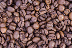 Bean coffee. Of the white background Stock Photography