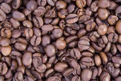 Bean coffee Stock Photography