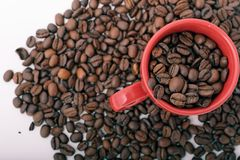 bean coffee kubek Obraz Stock