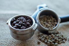 Man holds in his hands a holder with a filter and coffee beans royalty free stock images