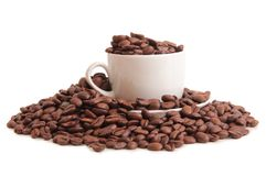 Bean and cup one Royalty Free Stock Photography