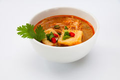 Bean curd with curry Royalty Free Stock Photos
