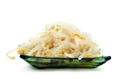Bean fresh sprouts. A pile of bean fresh sprouts isolated on a white background Stock Photography