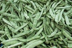Bean Heap verde no bazar turco fotos de stock