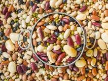Bean-Hintergrund Lizenzfreie Stockfotografie