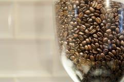 Bean Hopper Filled med grillade kaffebönor med kopieringsutrymme Fotografering för Bildbyråer