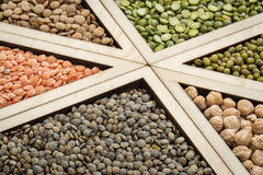 Bean, lentil and pea abstract Royalty Free Stock Image