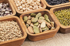 Bean and lentil set Stock Photos