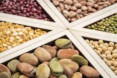 Bean-, Linsen- und Erbsenzusammenfassung Lizenzfreie Stockfotos